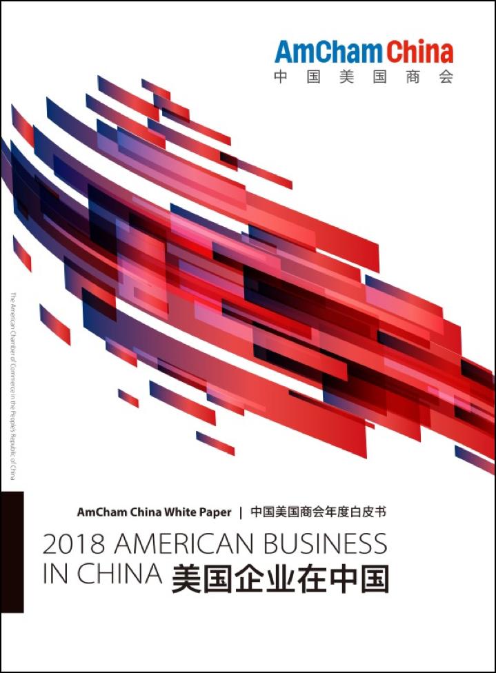 AmCham White Paper cover