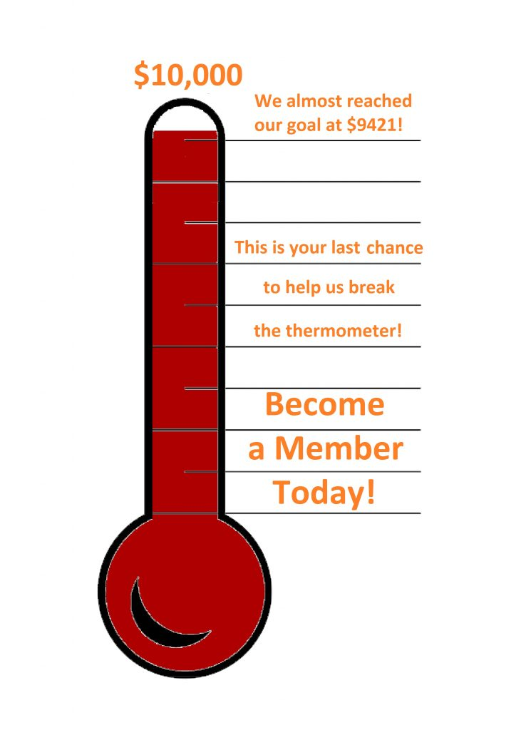 Donation Matching Thermometer
